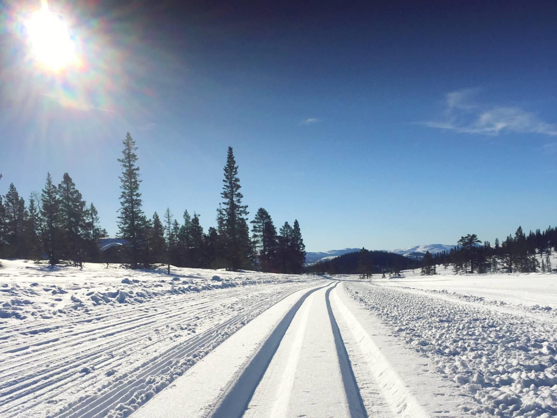 skispor-